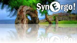 Synergo-Cover-Asturias
